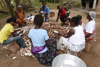Smart Cassava Processing Factories